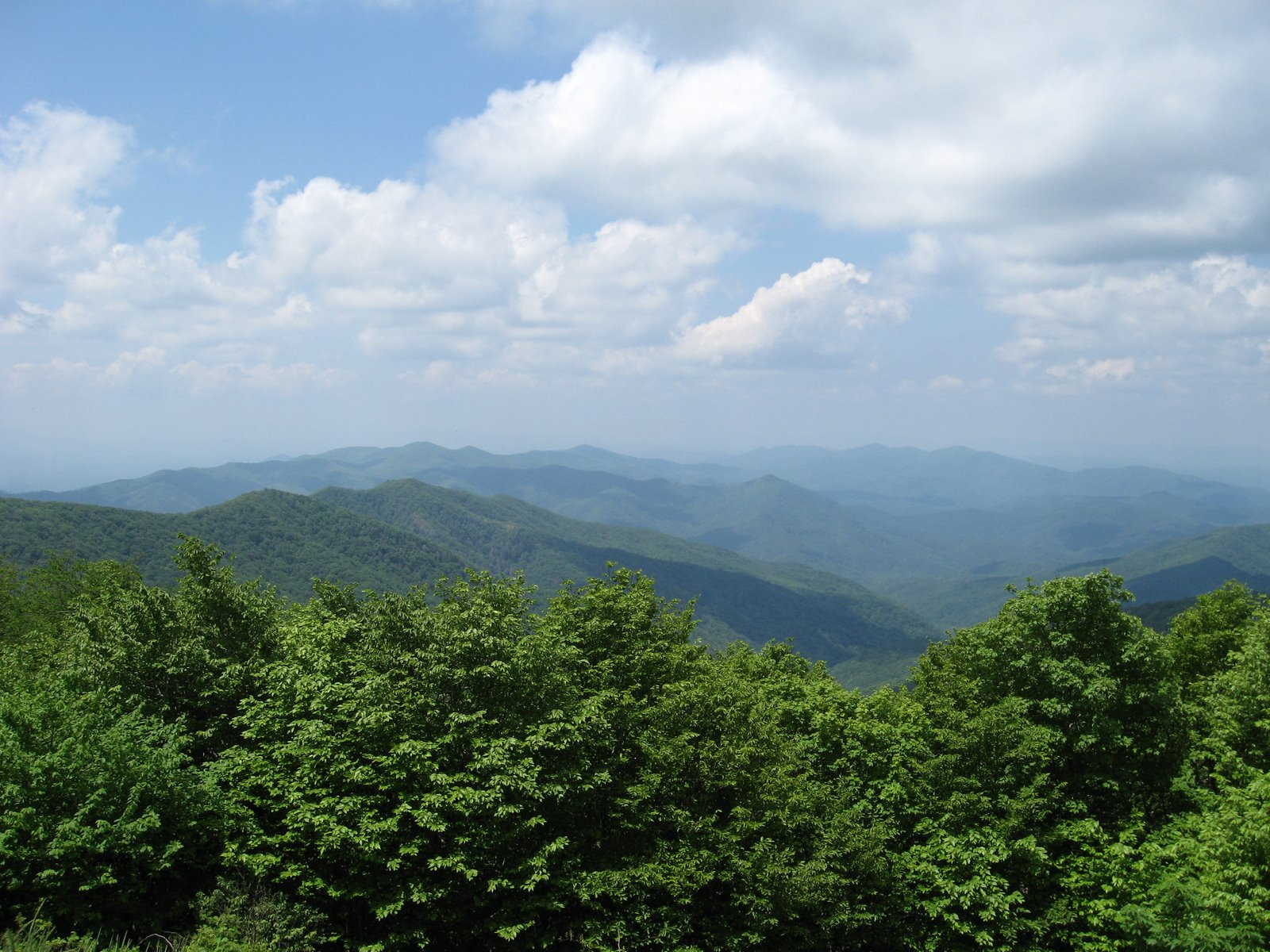 BEN Bama Environmental News Southern Appalachian Landscapes